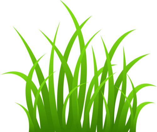 Cartoon Jungle Grass Green grass vector free vector