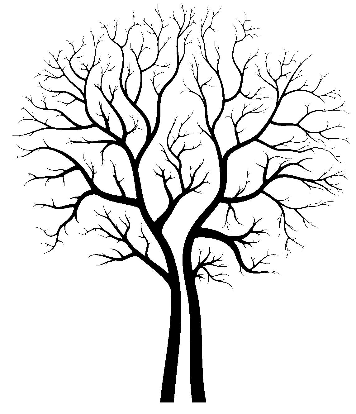 Line Art Of Trees : Tree pictures art clipart best