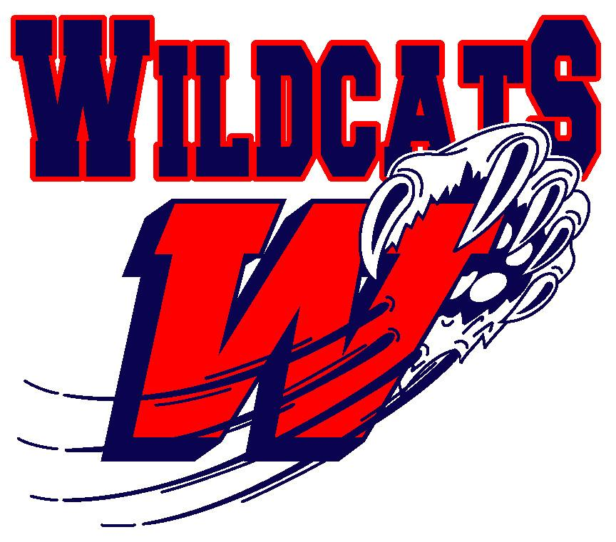 Eastern States Hockey League: Wildcats solve goaltending mystery ...