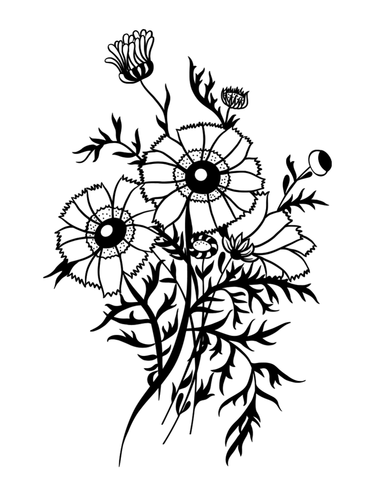 Wildflower Line Drawing : Drawing of a bouquet clipart best