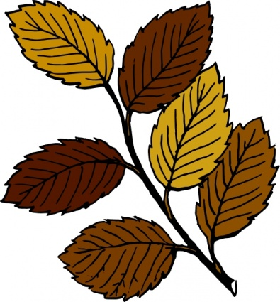 Autumn Leaves On Branch clip art vector, free vectors