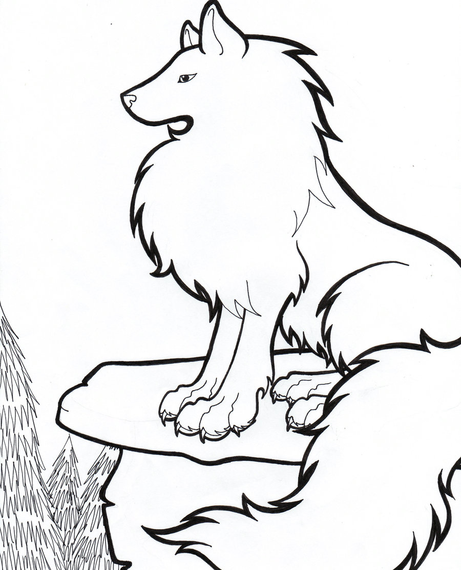 Arctic wolf drawing clipart best for Animal jam arctic wolf coloring pages