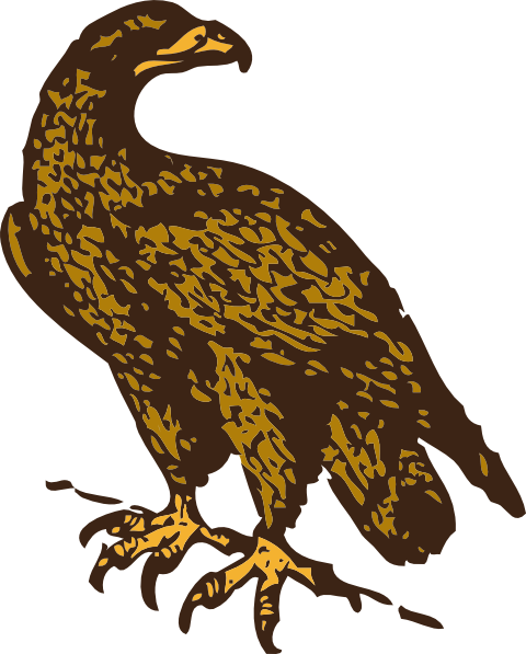 eagle bird clip art - photo #15