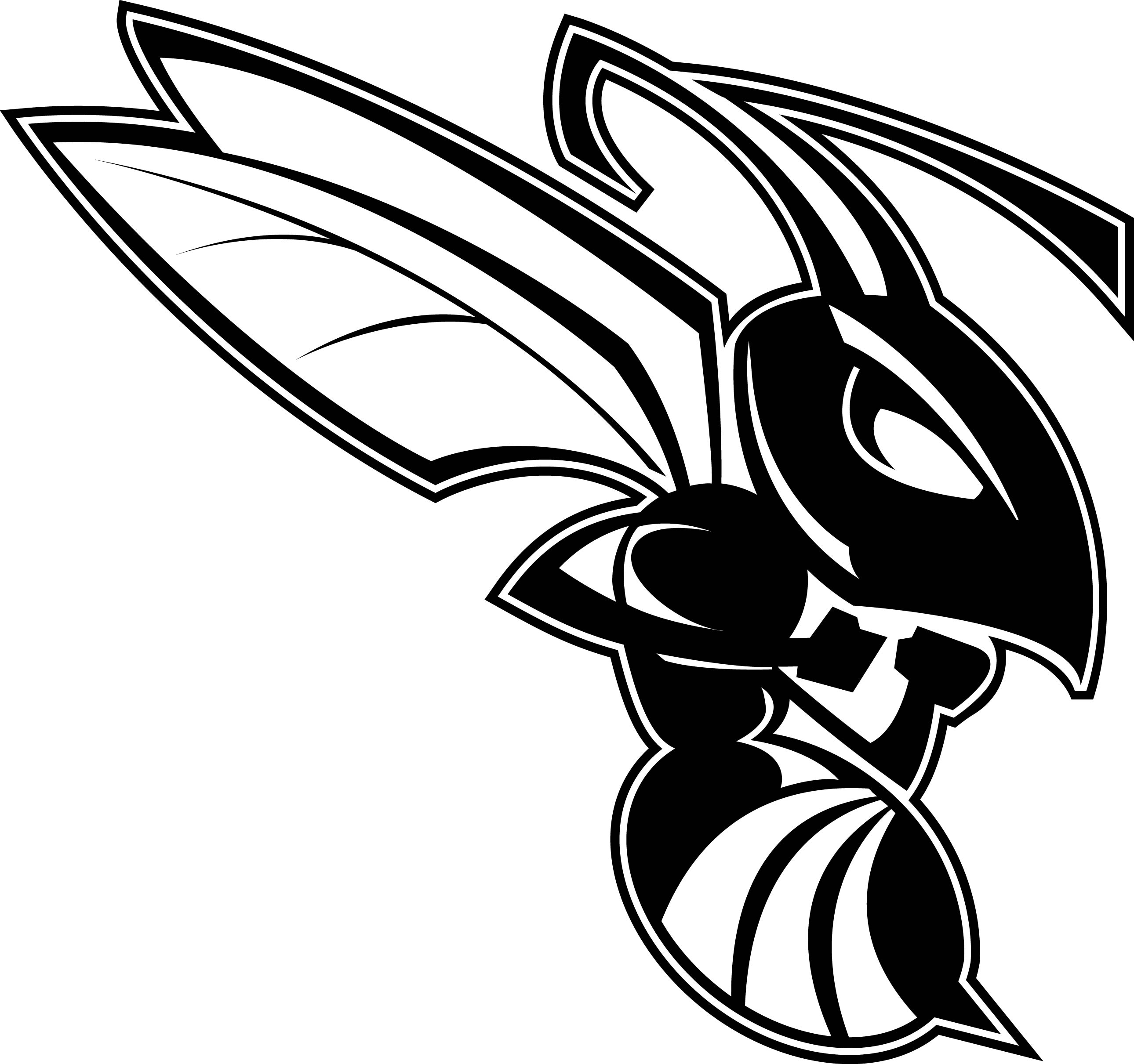 Baldfaced Hornet kills Yellowjacket
