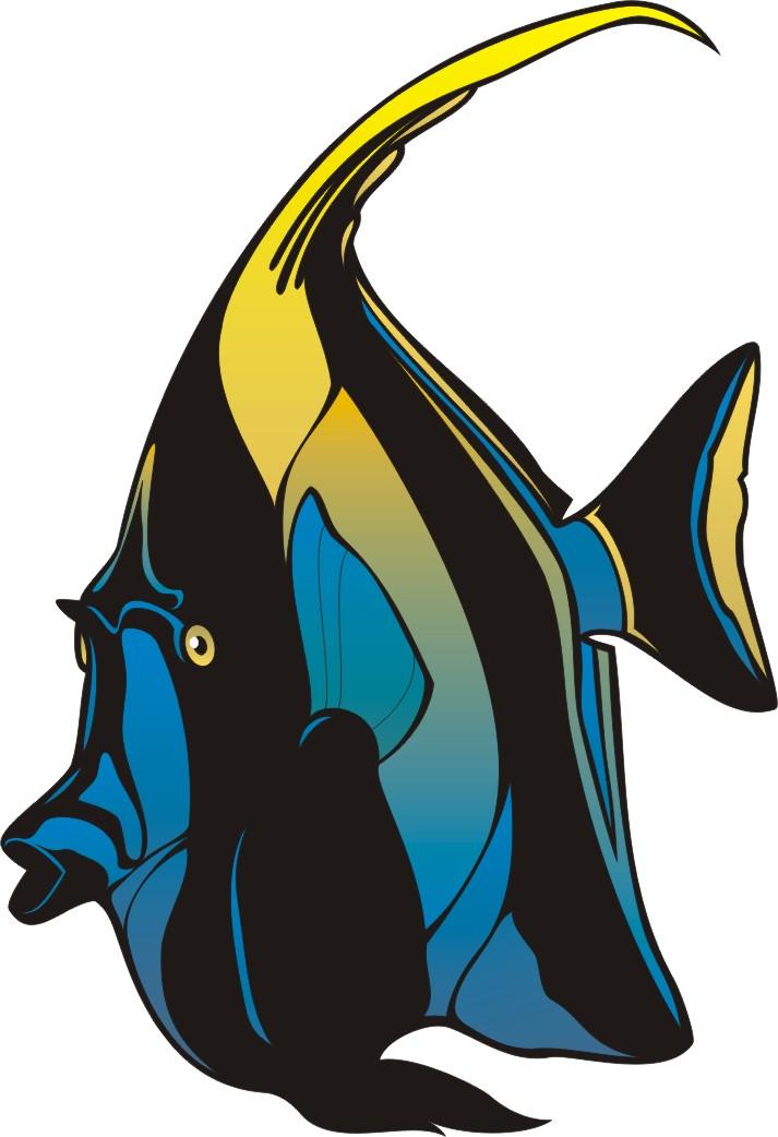 angelfish clipart clipart best angelfish clipart blue angelfish clipart