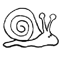 Drawings of snails clipart best for Simple snail drawing
