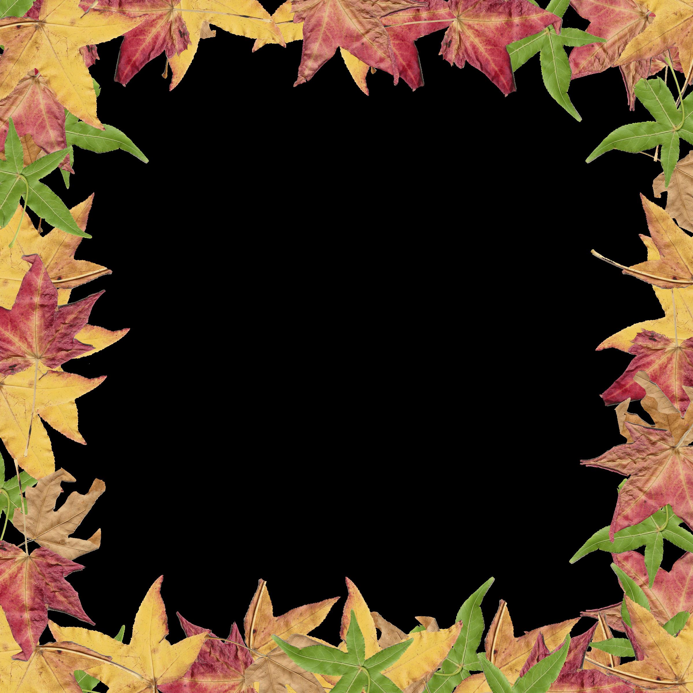 Leaf Border Design - ClipArt Best
