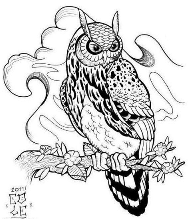 Owl Line Drawing Tattoo : Owl tattoo designs drawings clipart best