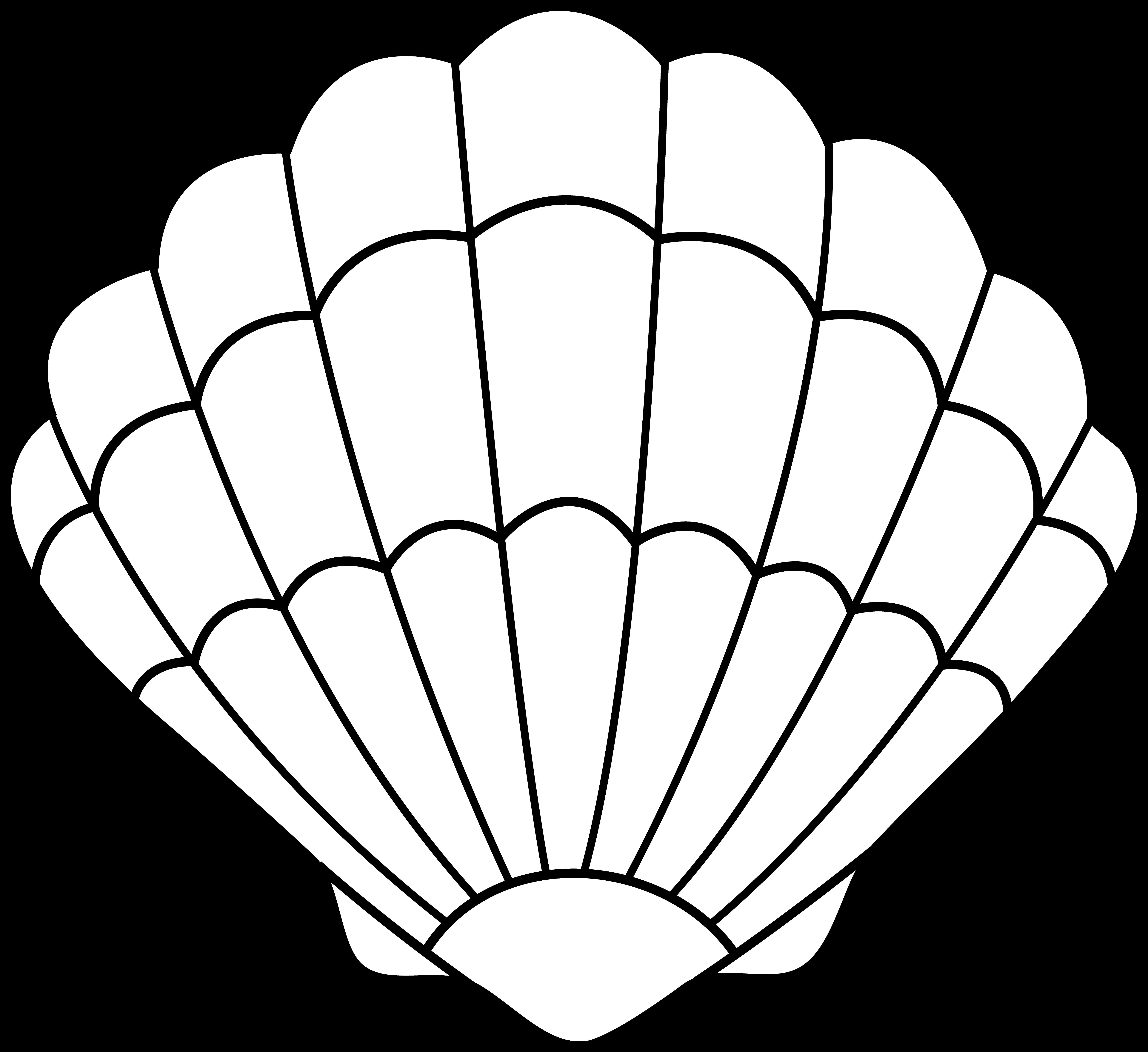 Cartoon Sea Shell - ClipArt Best