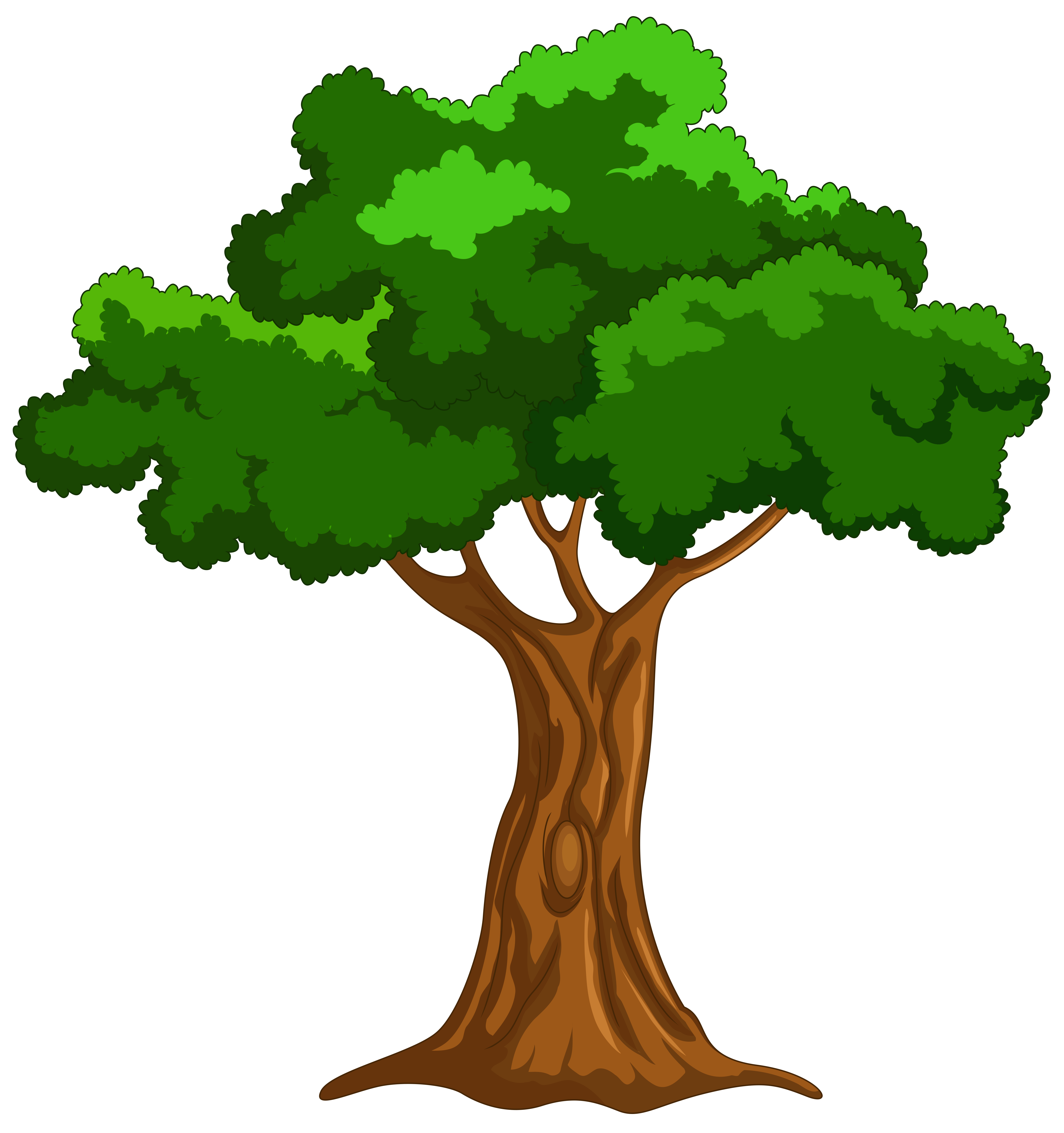 Cartoon trees clipart