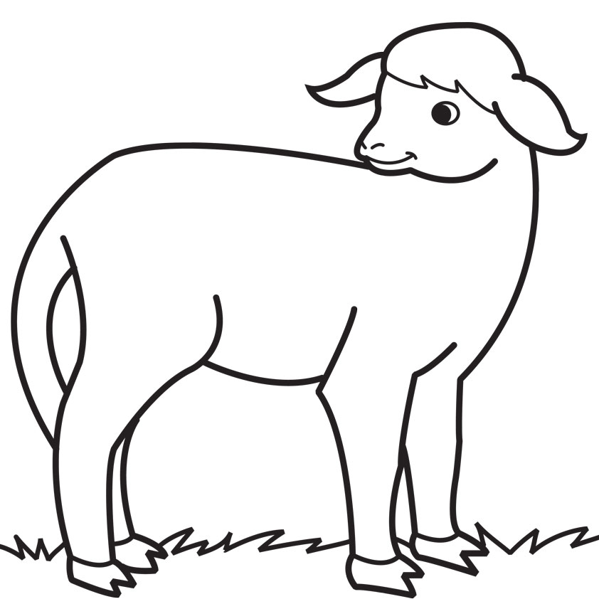Xfig Line Drawing : Sheep line drawing clipart best