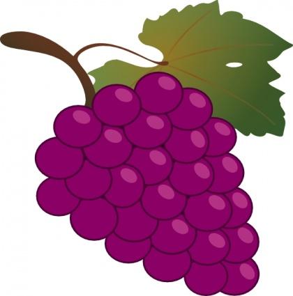 Cartoon Grapes - ClipArt Best