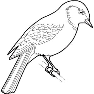 Sparrow Clip Art - ClipArt Best: www.clipartbest.com/sparrow-clip-art