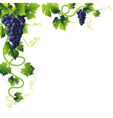 Grapes Vine Clip Art Vector Free For Download - ClipArt ...