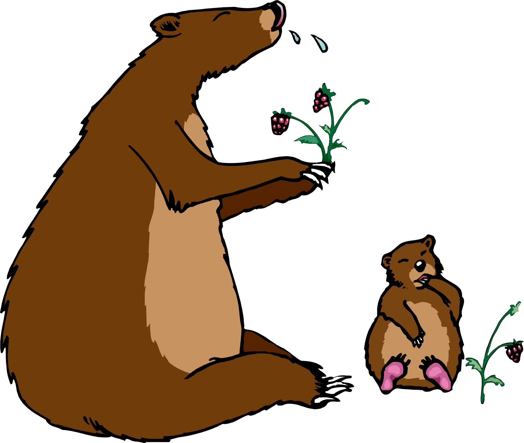 1740 x 1469 jpeg 384kB, Bear Hibernation Clip Art page 2